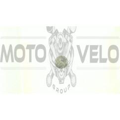 Поршень   МУРАВЕЙ 0   (Ø62,03)   2х кольцевой   EVO