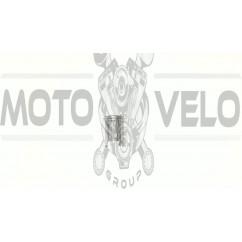 Поршень   МУРАВЕЙ 1р   (Ø62,50)   2х кольцевой   EVO