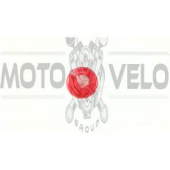 Леска мотокосы   Ø3,0mm, 15 метров   (круг)   EVO