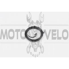 Пружина стартера мотокосы