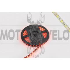 Лента светодиодная SMD 5050 (красная, влагостойкая, 60 крист/1м, бухта 5м)