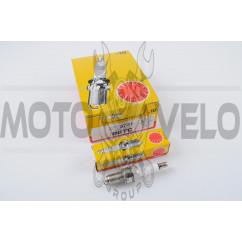 Свеча D8TC M12*1,25 19,0mm (4T 125-600cc) NG