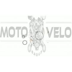 Ремкомплект карбюратора   Active 110   EVO