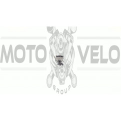 Карбюратор мотокосы   для Oleo-Mac Sparta 25   (WYL-159A)   EVO